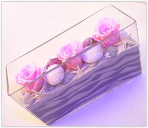 rose stabilisée et coquillages
